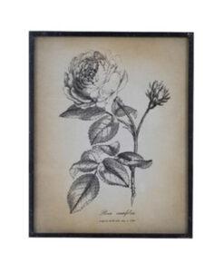 Quadro Blanc Mariclo stampa fiori A26457