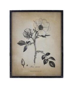 Quadro Blanc Mariclo stampa fiori